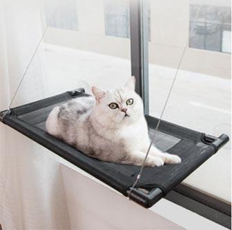 210426_1_고양이해먹추천-1